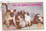 Sellos de Africa - Guinea Ecuatorial -  GATA SIAMESA CON CRÍAS