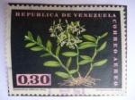 Sellos de America - Venezuela -  Orquídea - Epidendrum diforme Jacq.