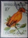 Sellos de America - Venezuela -  Gallito de Rocas - Rupicola rupicola