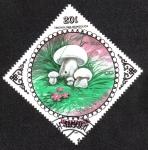 Sellos de Asia - Mongolia -  Tricholoma Mongolica