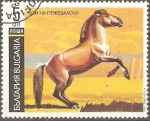 Stamps Bulgaria -  CABALLO  DE  PRZEWALSKI