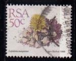 Sellos de Africa - Sudáfrica -  Lapidaria margaritae