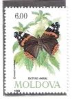 Sellos del Mundo : Europa : Moldavia :  Mariposa (Pyrameis atalanta)