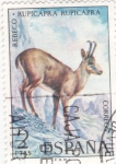 Stamps Spain -  Rebeco (15)