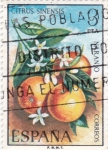 Stamps Spain -  Naranjo  (15)