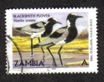 Sellos del Mundo : Africa : Zambia : Vanellus armatus