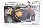 Stamps Guinea -