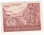 Stamps Indonesia -  Caña de Tebu