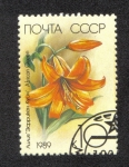 Stamps Russia -  African Queen