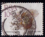 Stamps South Africa -  Flores