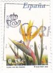 Stamps Spain -  Flora- Ave del paraíso (16)
