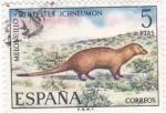 Sellos de Europa - España -  Fauna- Meloncillo  (16)