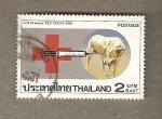 Stamps Asia - Thailand -  Cruz roja