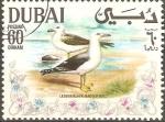 Sellos de Asia - Emiratos Árabes Unidos -  AVES.  GAVIOTA  DE  ESPALDA  NEGRA.