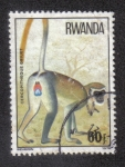Sellos del Mundo : Africa : Rwanda : Cercopitheque Griuet