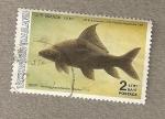 Stamps Thailand -  60 Aniversario Departamento de Pesquerías