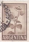 Stamps Argentina -  Girasol