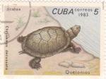 Stamps Cuba -  Tortuga marina