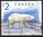 Sellos de America - Canadá -  CANADA 1999 Scott 1698 Sello Animales Oso Polar Bear Michel 1726