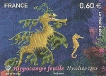 Sellos de Europa - Francia -  PECES  TROPICALES.  CABALLITO  DE  MAR  HOJA.