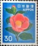 Sellos de Asia - Japón -  Intercambio 0,60 usd 30 yenes 1980