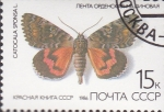 Stamps : Europe : Russia :  catocala sponsal