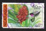 Sellos de America - Nicaragua -  Ginger
