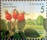 Stamps : America : Canada :  Intercambio mxb 0,20 usd 5 cent 1992