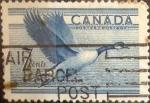 Sellos de America - Canadá -  Intercambio 0,20 usd 7 cent 1952