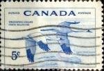 Stamps : America : Canada :  Intercambio jlm 0,20 usd 5 cent 1955