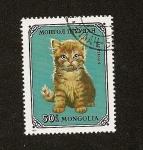 Stamps Asia - Mongolia -  FELINOS - Gato persa rojo