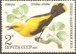 Stamps Russia -  AVES.  ORIOLUS  ORIOLUS.