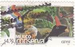 Sellos de America - México -  México conserva- aves
