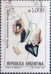 Sellos del Mundo : America : Argentina : Intercambio 0,25 usd 1000 australes 1989