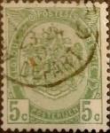 Sellos de Europa - Bélgica -  Intercambio 0,60 usd 5 cents. 1907