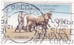 Stamps Spain -  Bimilenario fundación de Caceres (17)