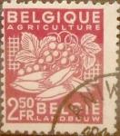 Sellos de Europa - Bélgica -  Intercambio 0,50 usd 2,50 francos 1948