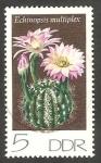 Sellos del Mundo : Europa : Alemania :  1602 - Cactus