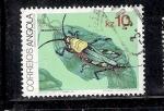 Stamps Angola -  Saltamontes, Zoonocerus variegatus