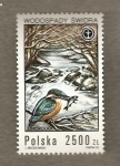 Stamps Poland -  Peces y pájaros
