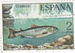 Sellos de Europa - España -  Trucha (18)