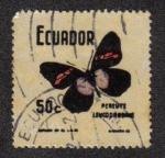 Sellos de America - Ecuador -  Mariposas