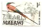 Stamps Africa - Malawi -  Pajaro