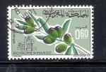 Sellos de Africa - Marruecos -  Olivo