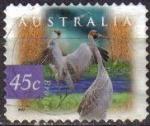 Stamps : Oceania : Australia :  AUSTRALIA 1997 Scott 1531 Sello Fauna Animales Aves, Pájaros Broiga Usado Michel 1643