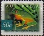 Stamps : Oceania : Australia :  AUSTRALIA 2003 Scott 2159 Sello Fauna Rana Orange thighed tree foog usado Michel 2237