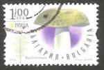 Sellos de Europa - Bulgaria -  Champiñón
