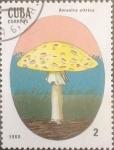 Sellos de America - Cuba -  Intercambio cxrf3 0,20 usd 2 cents. 1988