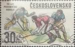 Sellos de Europa - Checoslovaquia -  Intercambio 0,25  usd  30 h. 1978