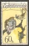 Sellos de Europa - Checoslovaquia -  1955 - Pájaro cantor